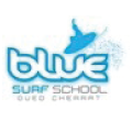 bluesurfschool